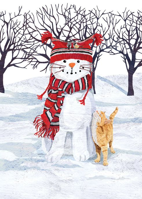 Cat Snowman Boxed Set Of 10