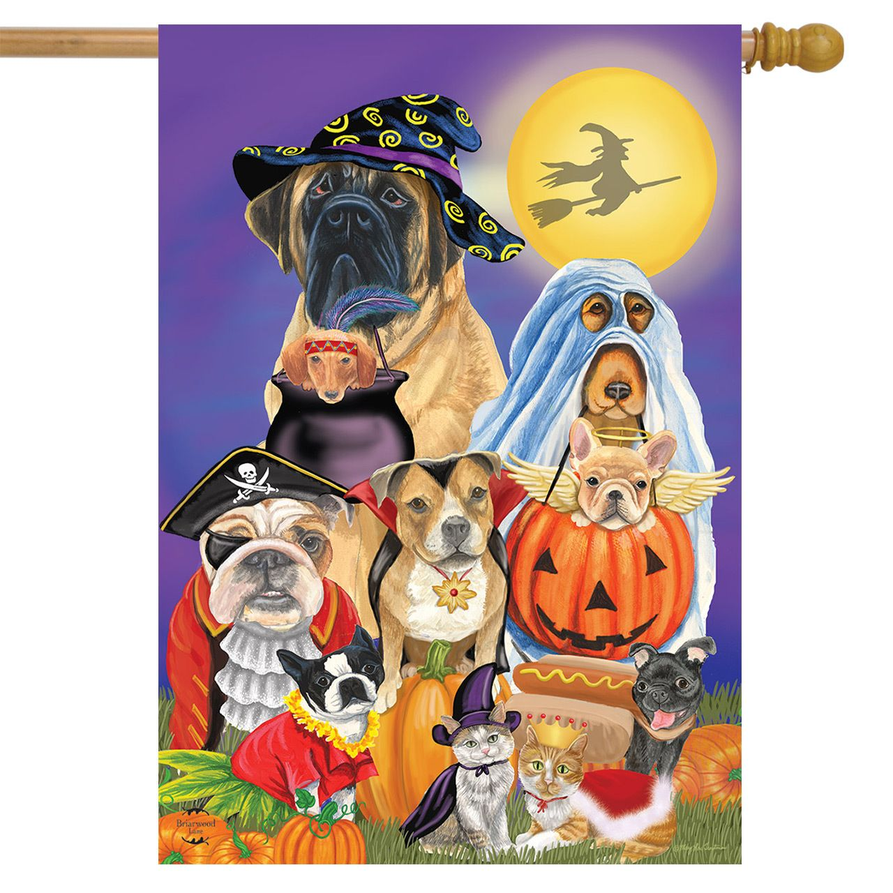 Trick or Treat Dogs House Flag