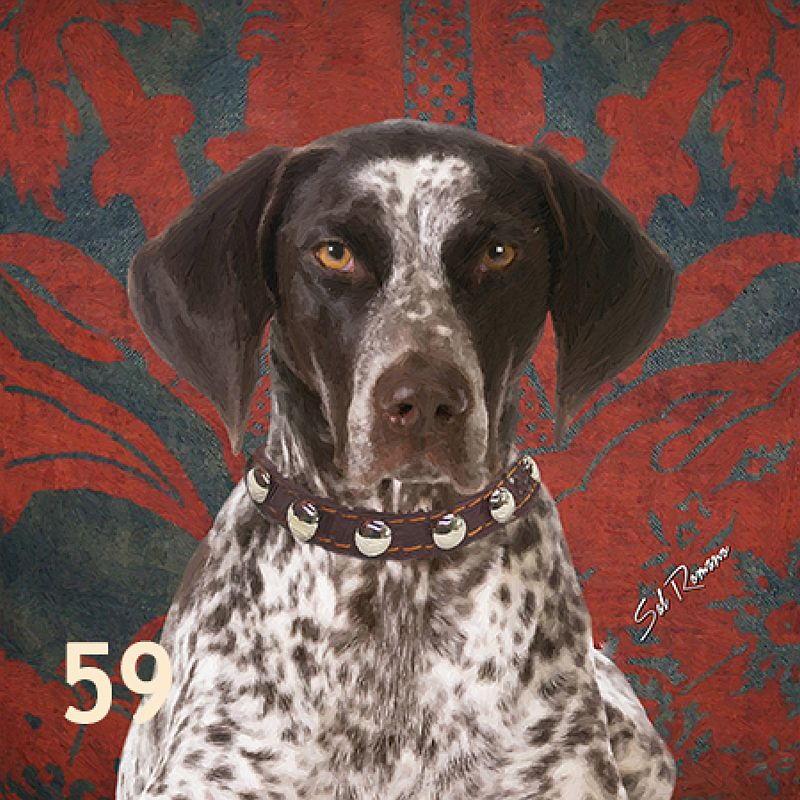 German Shorthair Dog Pillow